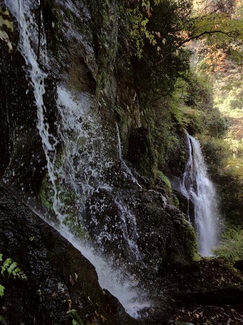 221106 うそぐいの滝28