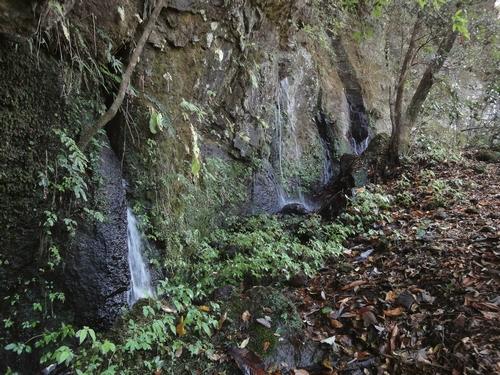 221106 うそぐいの滝25
