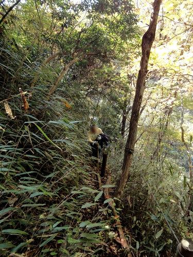 221106 うそぐいの滝31