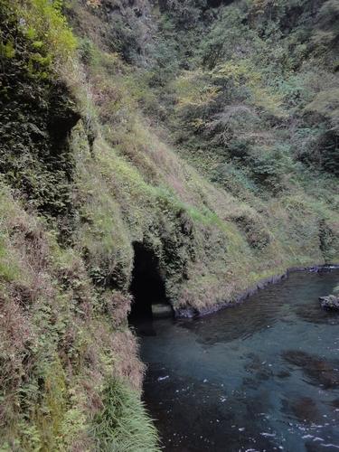 221106 白水の滝13