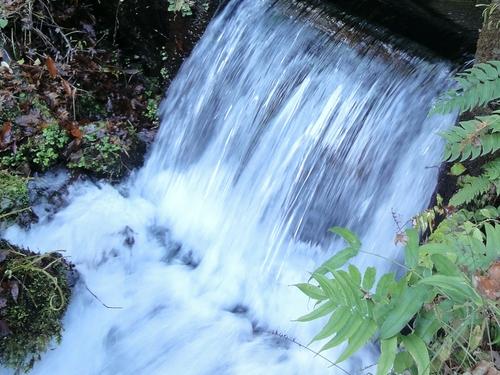 221120 山吹水源5