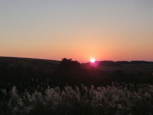 221120 夕陽3