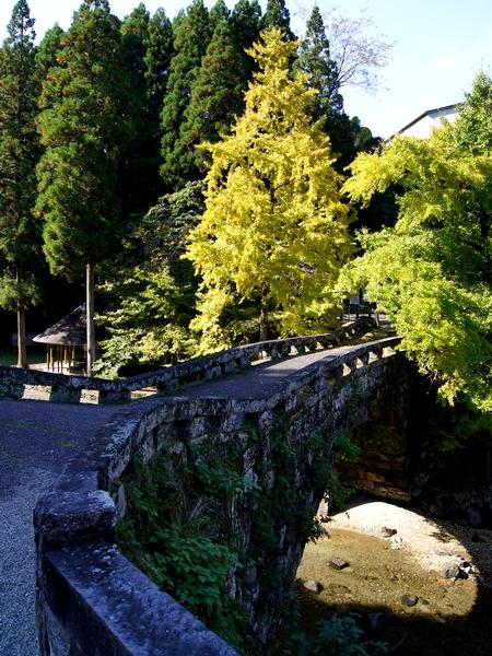 231101 二俣橋2