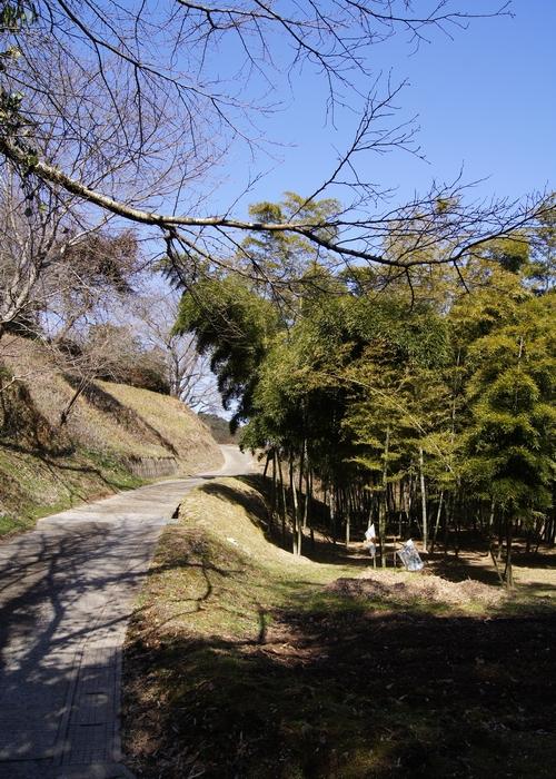 240129 田中城跡7