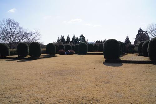 240129 田中城跡11