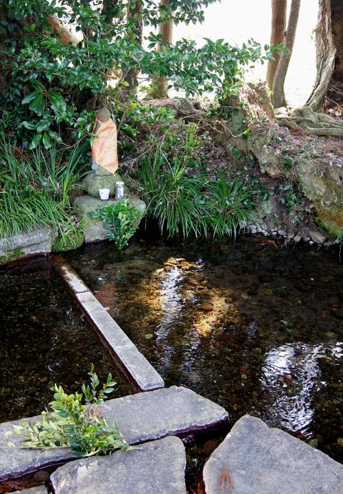 240211 杉伊川の湧水5