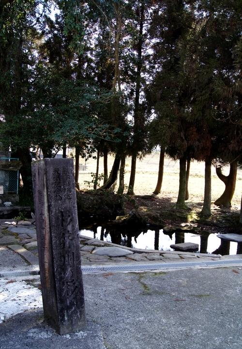240211 杉伊川の湧水2