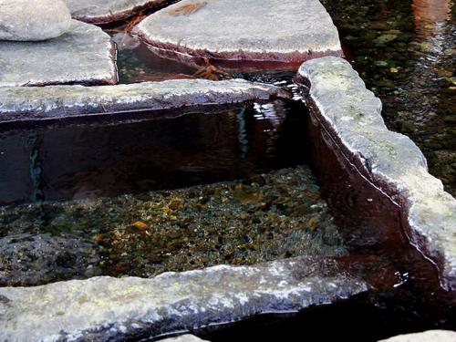 240211 杉伊川の湧水8