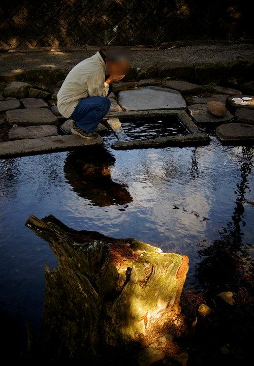 240211 杉伊川の湧水7