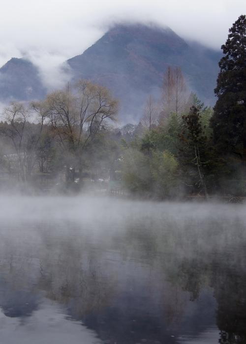 240214 金鱗湖3