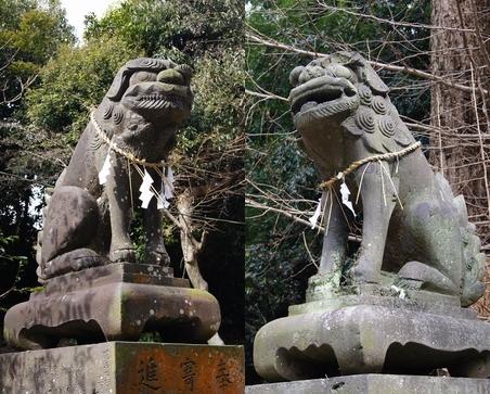 240303 玉垂神社9