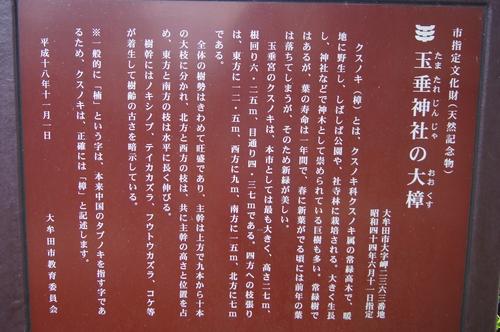 240303 玉垂神社8