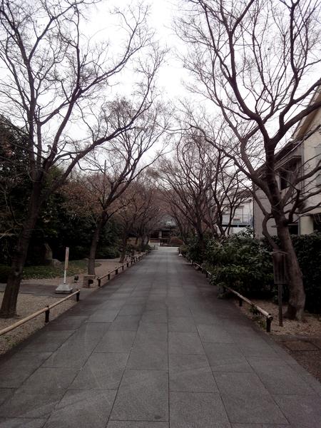 240305 高円寺00