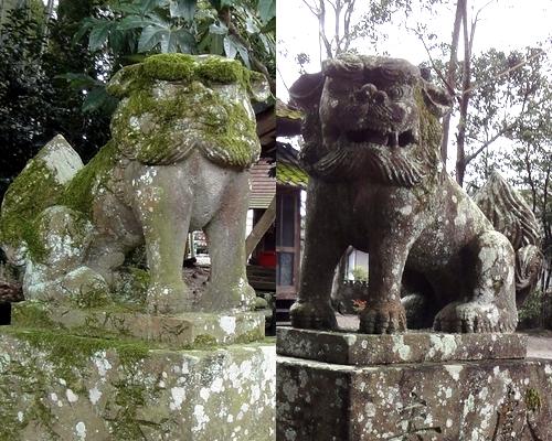 240319 老神神社7