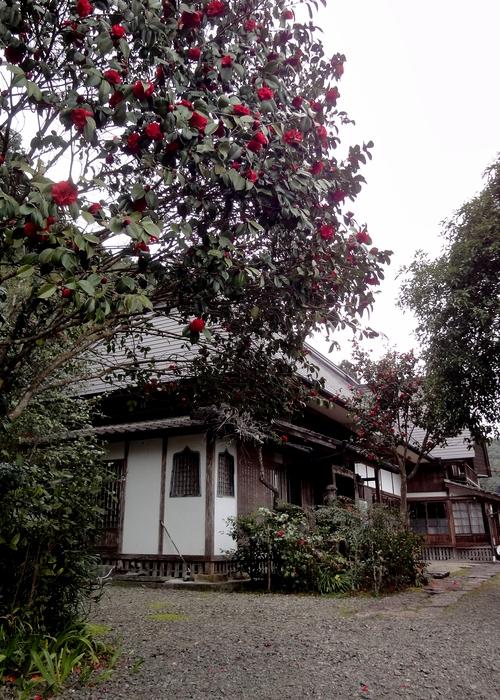 240319 高寺院5