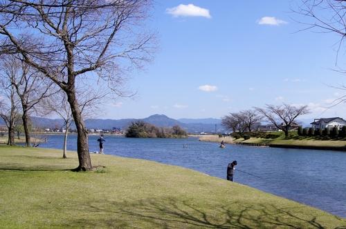 240325 江津湖散歩3