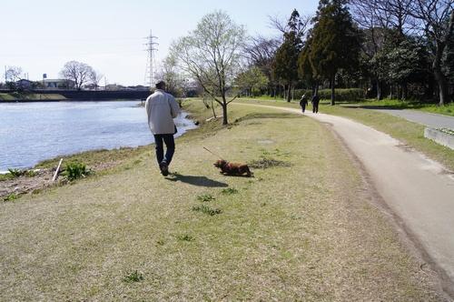 240325 江津湖散歩2