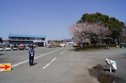 240331 おおづ桜まつり12