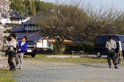 240406 神園の桜5