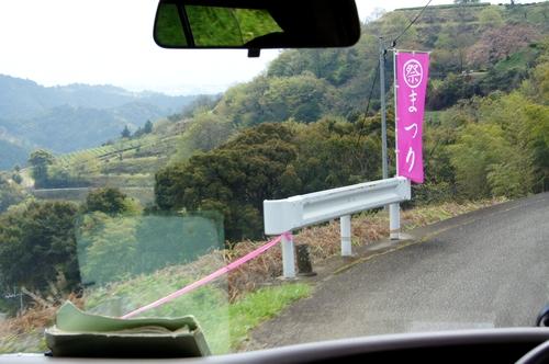 240414 遠山桜3