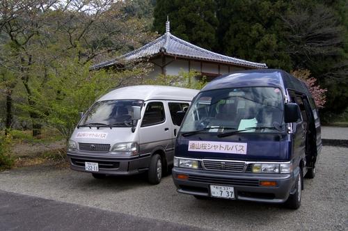 240414 遠山桜2
