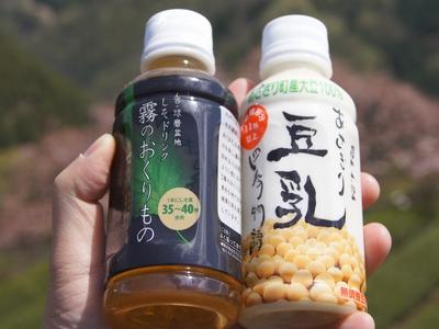 240414 遠山桜16-3