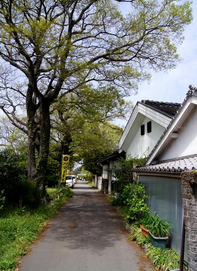 240415 小島町歩き42-1