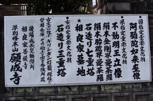 240414 願成寺2