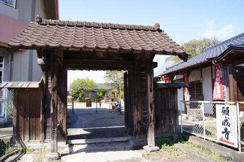 240414 願成寺1-1