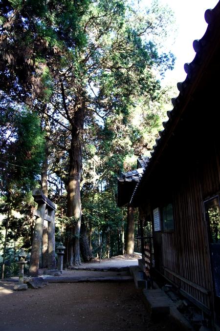 240414 遥拝神社14