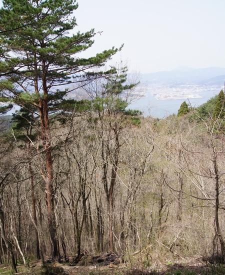 240428 亀山公園6