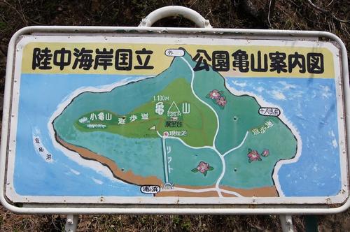 240428 亀山公園3