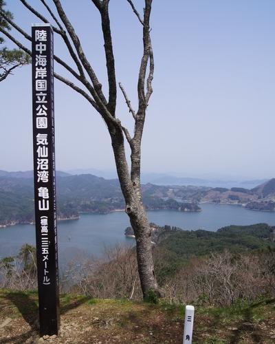 240428 亀山公園7
