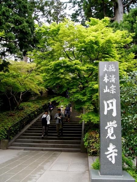 240430 円覚寺2