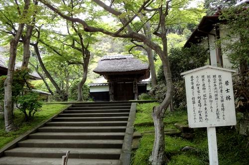 240430 円覚寺12