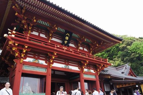 240430 鶴岡八幡宮3