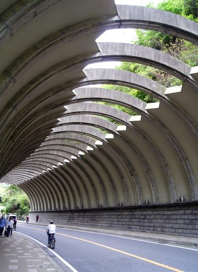 240430 鶴岡八幡宮1
