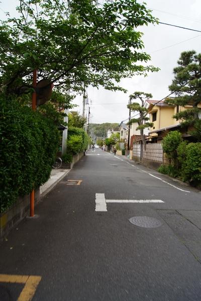 240430 鎌倉1