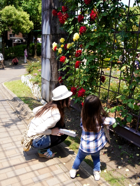 240512 動植物園10