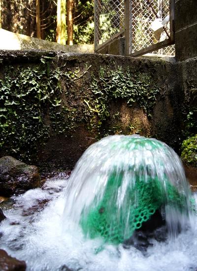 240603 諏訪水源19