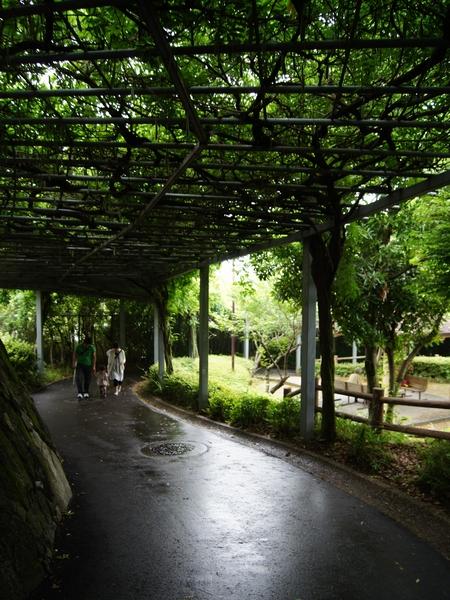 240623 大牟田市動物園16
