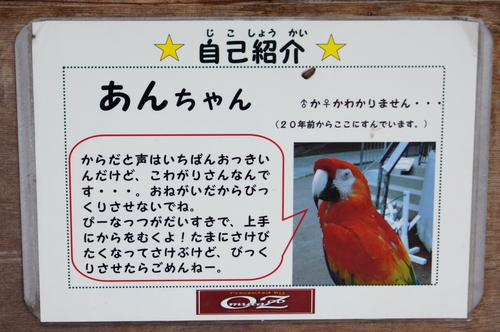 240623 大牟田市動物園15