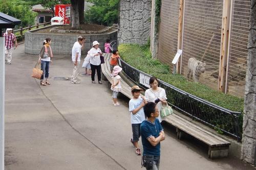 240623 大牟田市動物園25