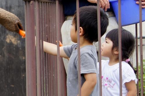 240623 大牟田市動物園31