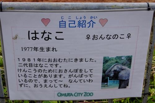 240623 大牟田市動物園29