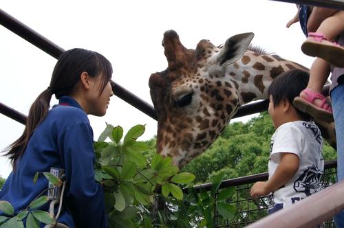 240623 大牟田市動物園35