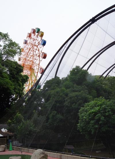 240623 大牟田市動物園46