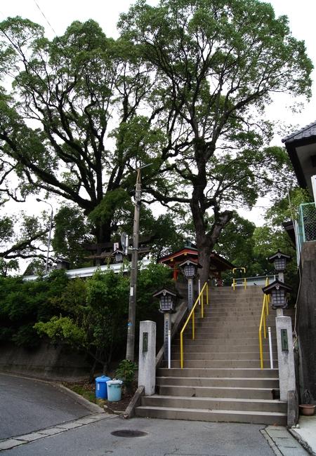 240623 熊野神社1