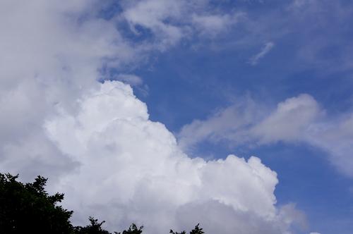 240705 梅雨の晴れ間2