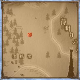 トレジャー地図